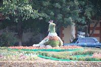На площади Толбухина - птица счастья