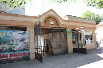 С Днём рождения, зоопарк